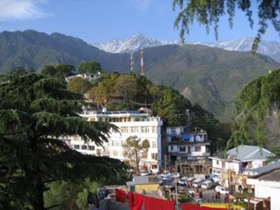 Little Lhasa